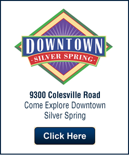 silver spring real estate